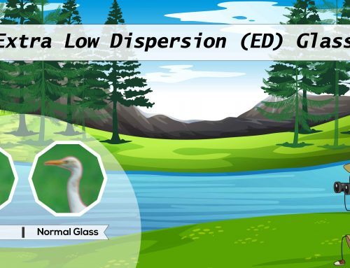 What is Extra Low Dispersion (ED) Glass?