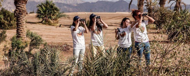Focusing Binocular