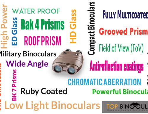 The Marketing Hype with Best Binoculars: Know the Facts